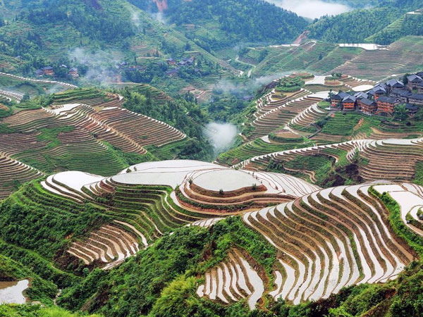 https://fr.topchinatravel.com/pic/ville/guilin/attractions/Longji-Rice-Terrace-1.jpg