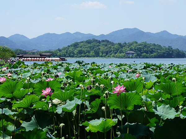 https://fr.topchinatravel.com/pic/ville/hangzhou/attractions/West-Lake-14.jpg