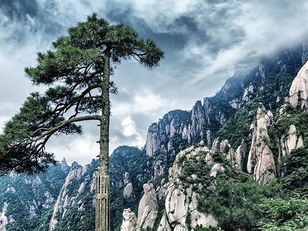 Montagne jaune (Mt. Huangshan)