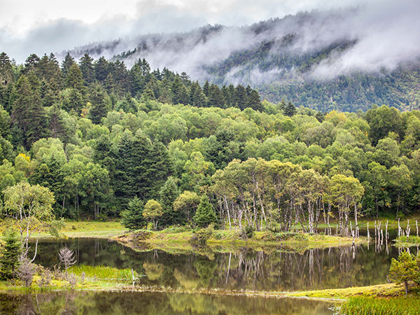 https://fr.topchinatravel.com/pic/ville/shangri-la/attractions/potatso-national-park-4.jpg